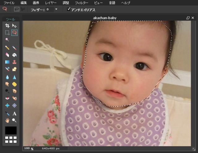 「Pixlr Online Photo Ediotr」画像に投げ縄ツールでモザイク処理をかけたい個所を1周させる