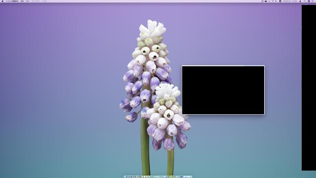 MacのDOCKのサイズが小さい様子
