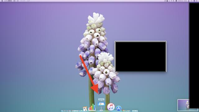 Mac、DOCKのアイコンをマウスーバーした時だけ拡大表示される様子