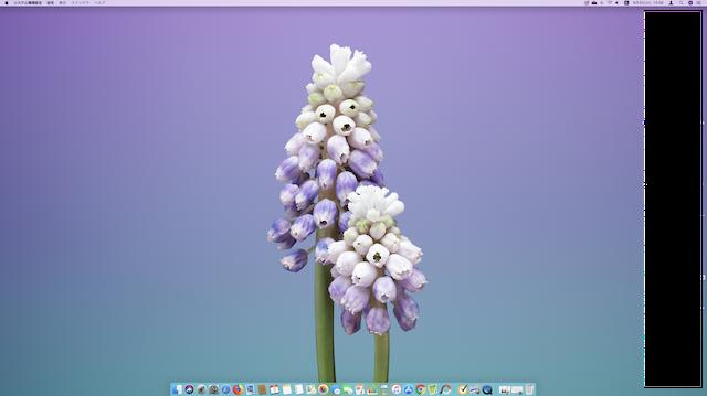 Mac、DOCKのアイコンが小さくなった