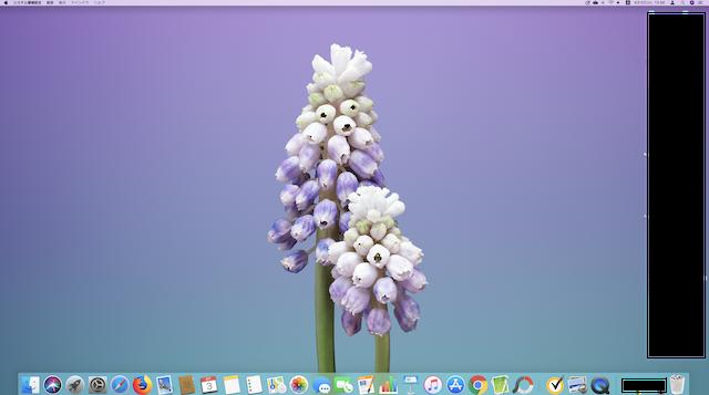 Mac、DOCKのアイコンが大きくなった