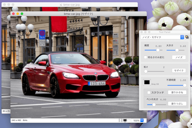 Macアプリ「ToyViewer」オリジナルの写真とモザイクを掛けた写真